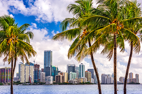 A stock photo of the downtown Miami skyline.