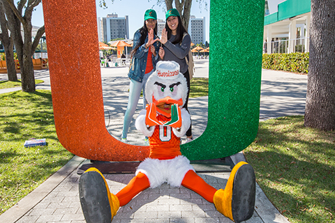 The University of Miami mascot, Sebastian the Ibis.